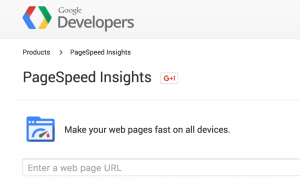 Website page speed grader
